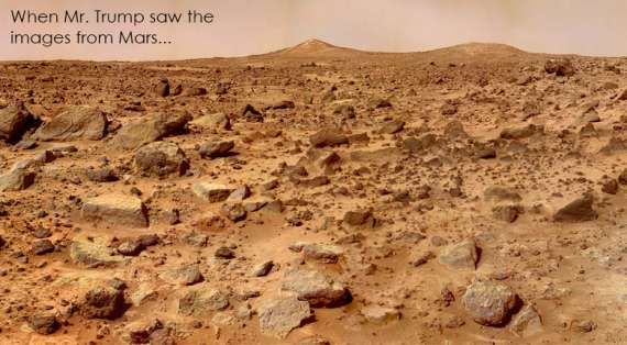 Mars Surface Pathfinder Image