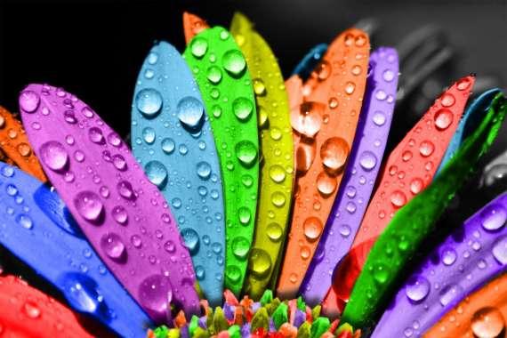 Изучение восприятия цвета - немного практики.  Для вашего здоровья и душевного...