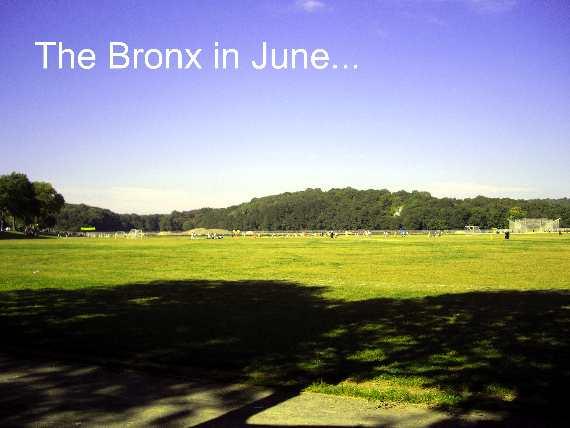 Van Cortlandt Park Bronx