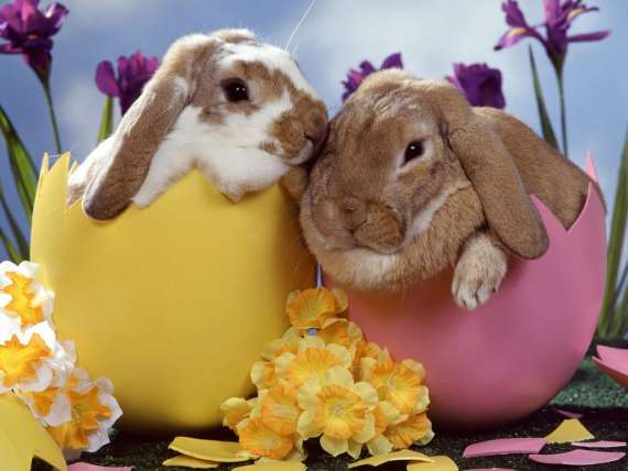 Easter poems negle Images