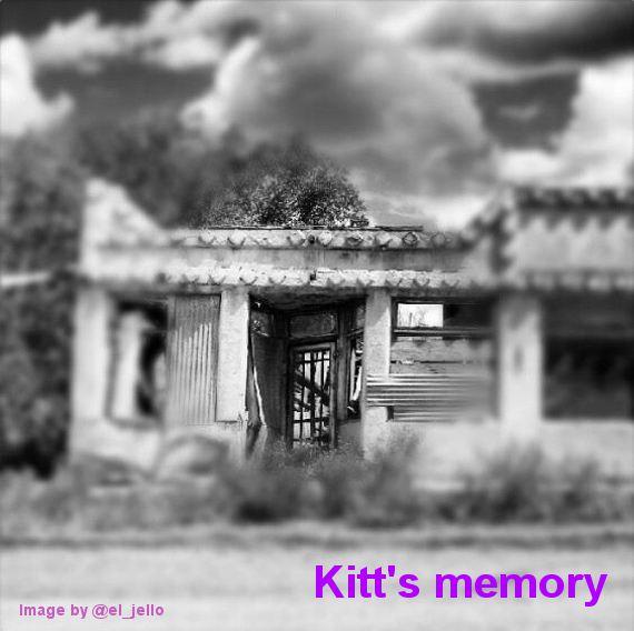 Fuzzy Memories